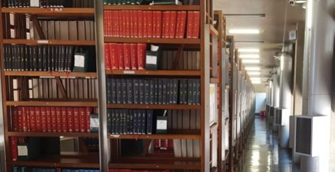 Constitutional Court Library